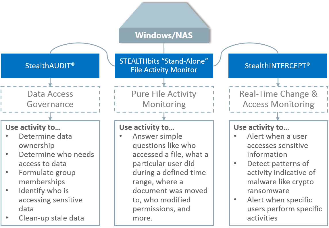 File Activity Monitoring